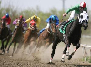 todays_equine_horse_racing.jpg.opt790x586o0,0s790x586